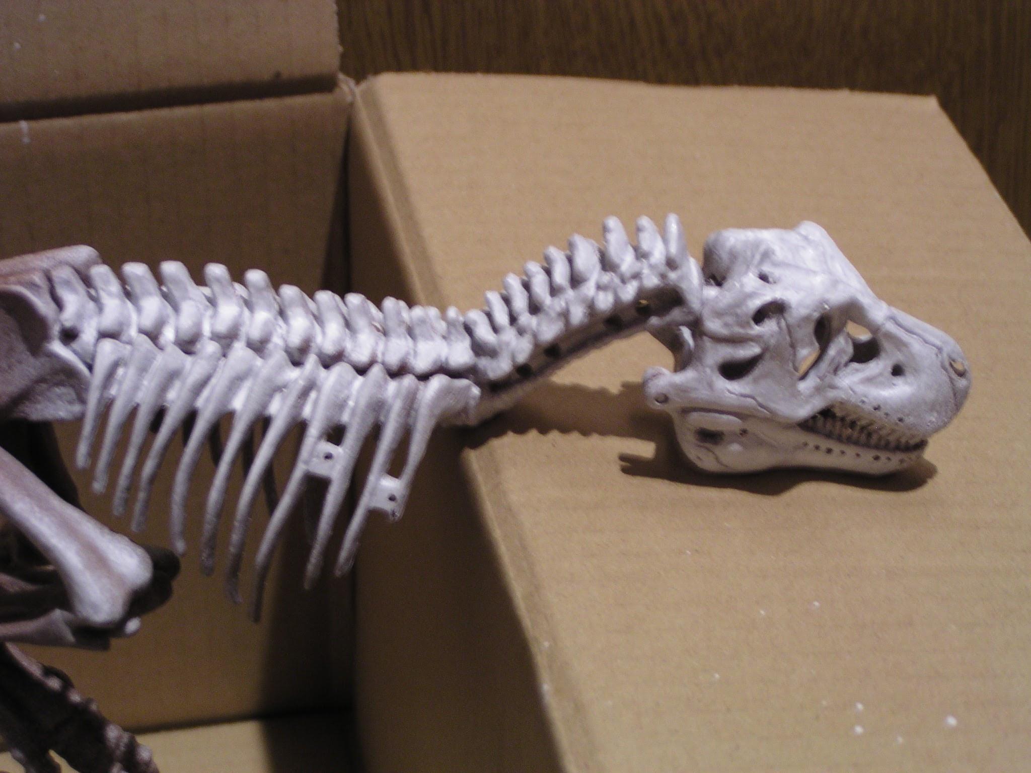 ティラノサウルス骨格モデル